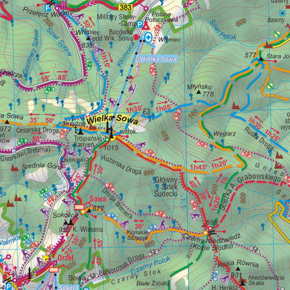 fragment Góry Sowie