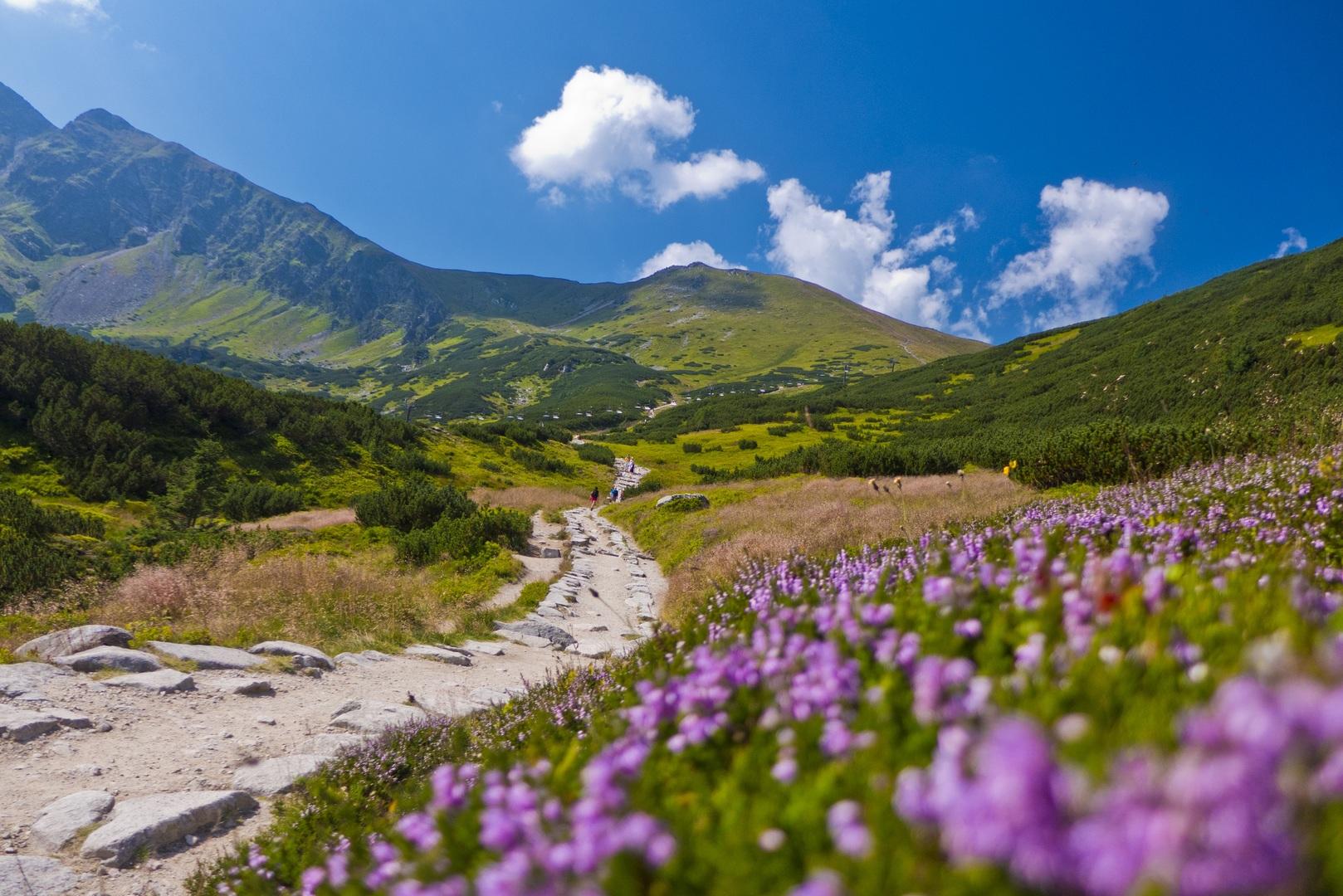 szlaki turystyczne Tatry